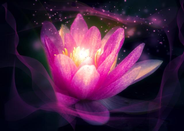 un lotus libérant de l'énergie